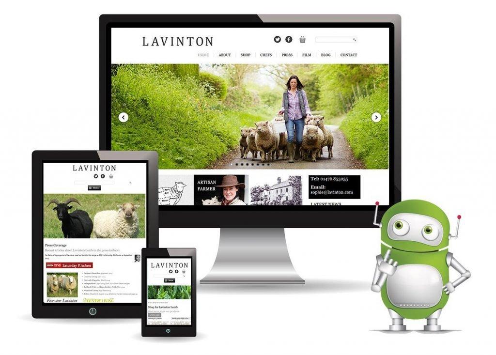 Lavinton Lamb Ecommerce Web Design, Stamford