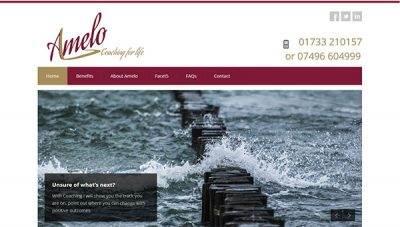 Amelo Coaching – static brochure web design