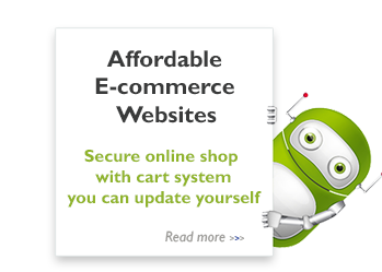 Secure Ecommerce website design
